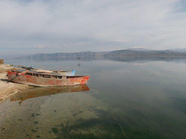 Birds watching & Cycling / Vegoritida Lake